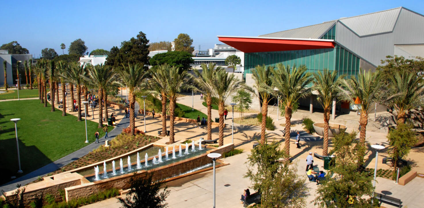 A photograph of a beautifully scenic community college in Floridia, US, surrounded by palm trees